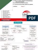 TALLER 2- DIAPOSITIVAS B2.pdf