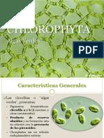 3 Chlorophyta  2019