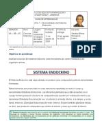 Actividad 1 - Generalidades del Sistema endocrino