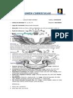 CV CARLOS PEREZ (1)