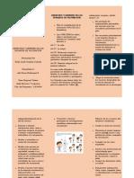 FOLLETO ADMINISTRACION DE INMUNOBILOGICOS EN EL MARCO DEL PROGRAMA AMPLIADO DE INMUNIZACION