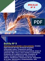 BolillaNº 9- 2020