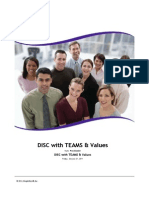 DISC Report with TEAMS & Values
