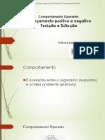 Reforçamento e Punição pdf sway base.pdf