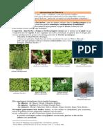 Aromatiques-epices-1-cuisine-et-recettes.pdf