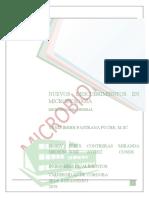 NUEVOS DESCUBRIMIENtos - terminado.docx