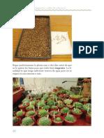 Guia_practica_de_propagaci_n_y_cultivo_de_las_especies_del_genero_Echeveria-61-70