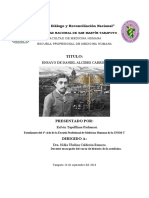Ensayo sobre el legado de Daniel Alcides Carrión modificado