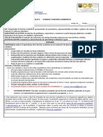 ACTIVIDAD N° 2 - 3° MATEMÁTICA