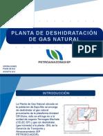 Presentación del proceso de deshidratación de la PG.pptx