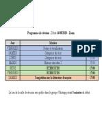 Programme de révision - pdf.pdf