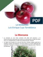 lamanzana-131018152310-phpapp01