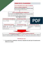 ACTIVIDAD REDUCIMOS EL USO DEL PLÁSTICO.pdf