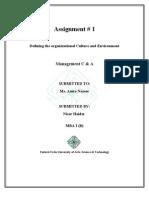 assignment #1 management