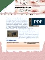 FICHA INFORMATIVA N.pdf