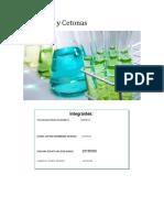 aldehidos y cetonas final