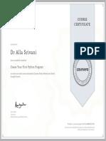 41) PYTHON PROGRAM (PROJECT) CERTIFICATE.pdf