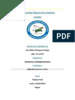TRABAJO FINAL ANATOMIA Y FISIOLOGIA HUMANA ADA.docx