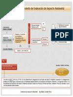 DESCRIPCION DEL PROCEDIMIENTO Evaluación de impacto ambiental