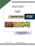 rapport_etude_anacarde.pdf