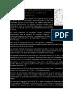 REACTIVACION DE LOS PUERTOS MAS IMPORTANTES DE COLOMBIA EN TIEMPO DE PANDEMIA