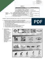 6ª UNIDAD 2  SOCIALES hominizacion y prehistoria III 2020 AGOS