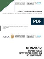 SEM. 12 GRUPO DE TRABAJO, PLATAFORMA DC, LEY DE MOVILIZACION