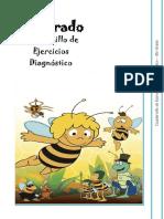 6to Grado - Cuadernillo de Ejercicios (Diagnóstico)