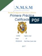 1PRACTICA CALFICADAAL G7.docx