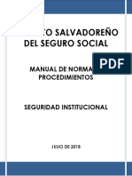 MNP_Seguridad_Institucional_Julio_2018