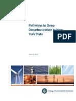 2020-06-24-NYS-Decarbonization-Pathways-Report (4).pdf
