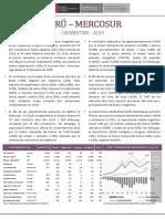 RCB Perú - Mercosur - I Semestre 2019.pdf