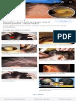 alergia en el cuero cabelludo remedios caseros - BúsquedadeGoogle