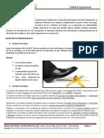 MODULO DE ESTUDIO PANORAMA DE RIESGOS