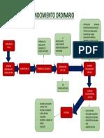 425003141-FLUJOGRAMA-PROCESO-ORDINARIO-docx.docx