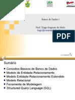 aula-bd-2010.pdf