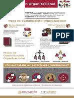 comunicacion-organizacional 2 (1) (1).pdf