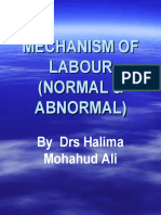 MECHANISM OF LABOUR (NORMAL and  ABNORMAL) (3)