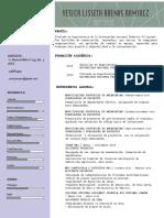 cv arenas.pdf