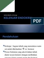 KELENJAR ENDOKRIN-1