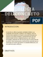 PATOLOGIA-DEL-CONCRETO EXPOSICION.pptx