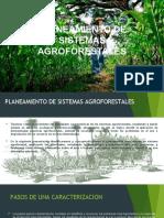 PLANEAMIENTO DE SISTEMAS AGROFORESTALES