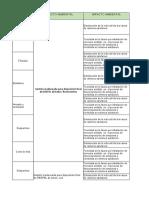 Roles Y RESP Especificos.xlsx