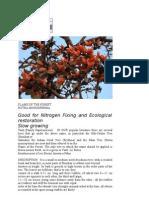 Tree Info
