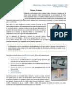 Medicina Física - Clase 15 - Órtesis y Protesis.