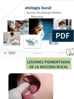 lesiones-pigmentadas-de-la-mucosa-bucal pe.pdf