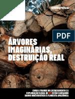 Relatorio_ArvoresImaginariasDestruicaoReal.pdf