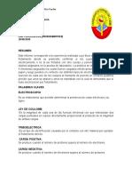 Informe De Lab - Electrizacion por Frotacion