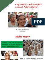 Bases conceptuales y teóricas para la atención al A.M 2020