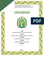 INDUSTRIA MINERA Y ACTIVIDADES MINERA.pdf